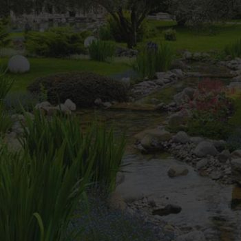 Landscape<br> Design Services